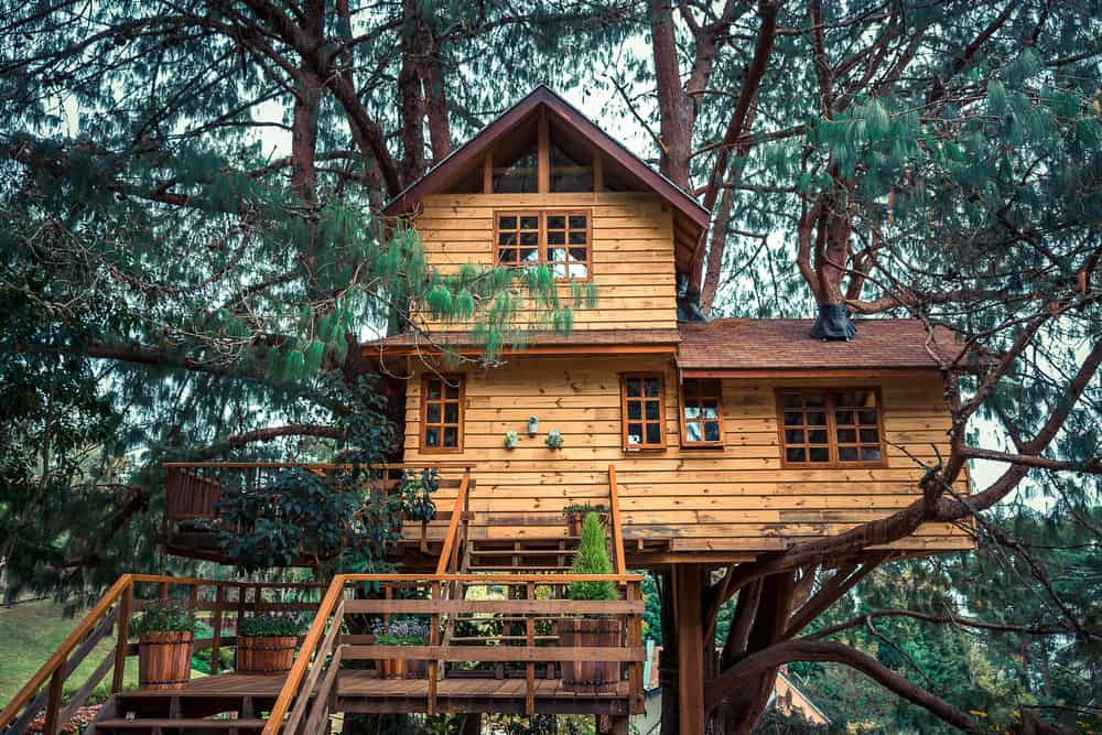 2-story treehouse for living