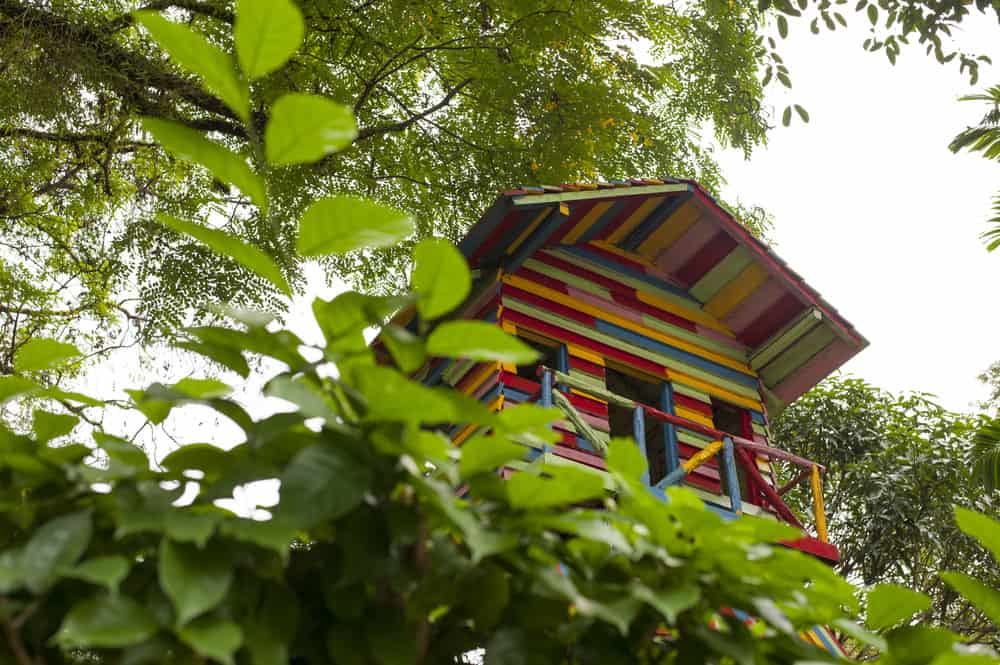 Bright colorful kids treehouse