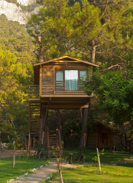 Cozy treehouse with a large window on a coniferous tree near the mountains