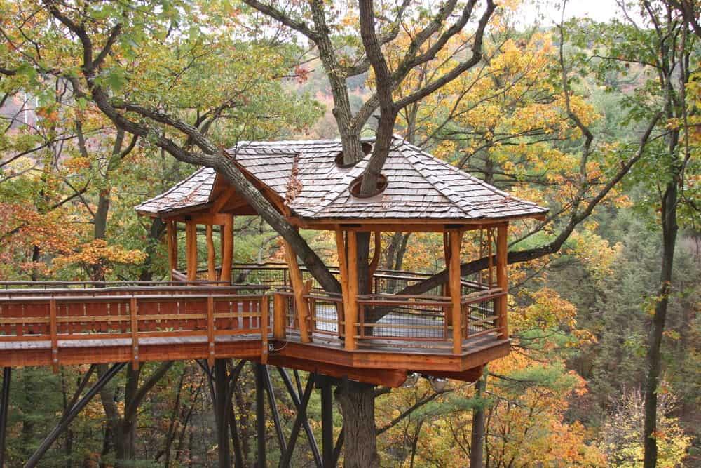 High treehouse in gazebo style
