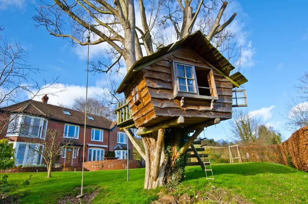 Hut treehouse in the backyard