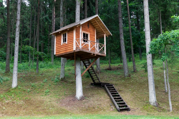Lost in the woods small treehouse