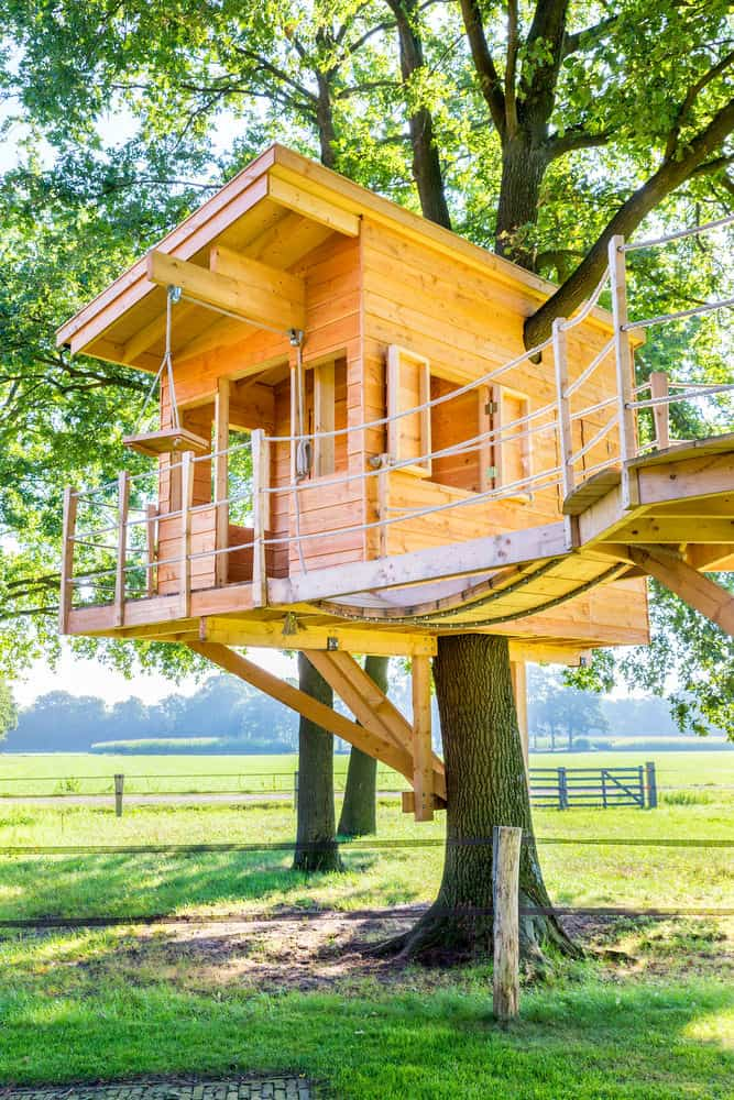 Sunny wooden tree house with wheel and axle machine
