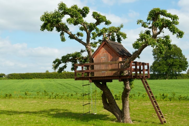 Treehouse with wrap-around porch, roper ladder and swing