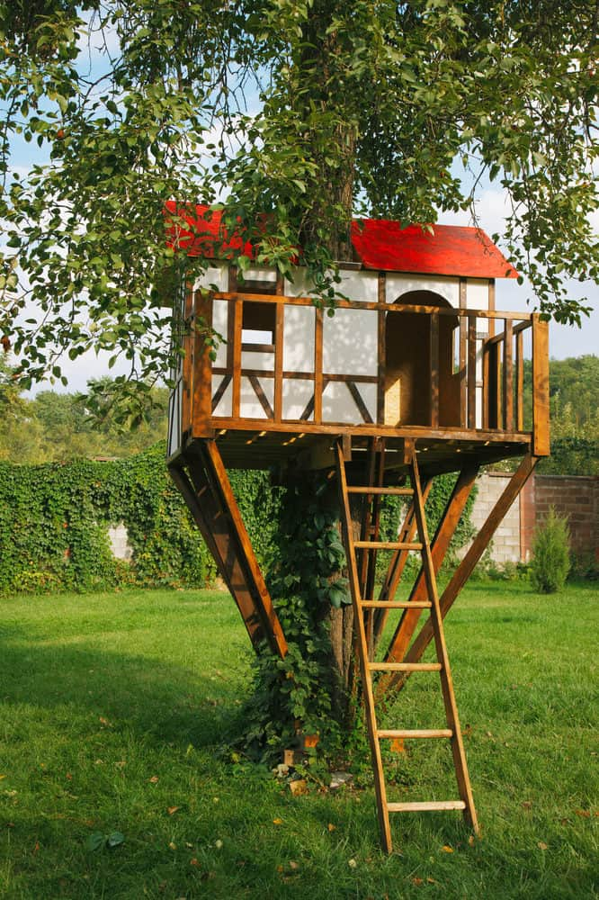 Tudor style treehouse with red roof