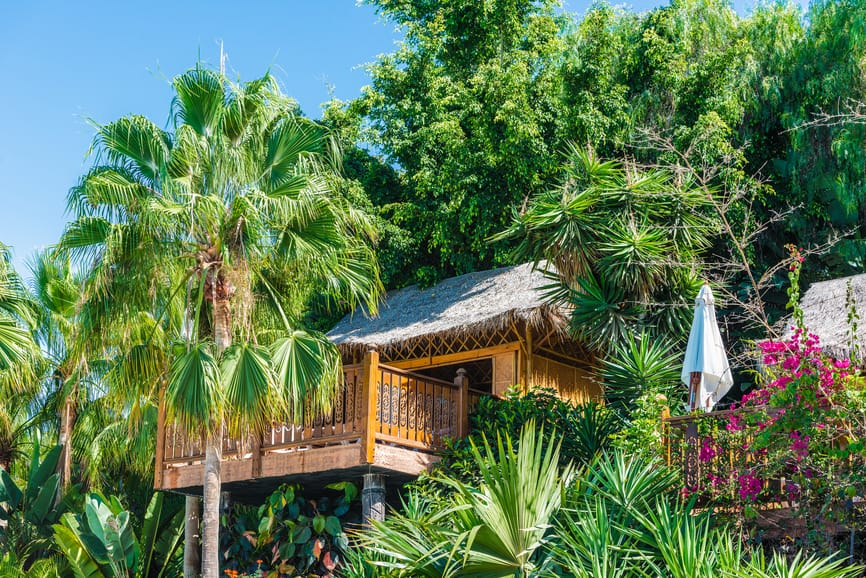 Vacation treehouse built in the tree canopy with large deck